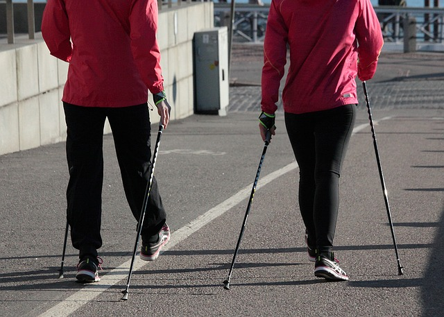 Nordic walking kije